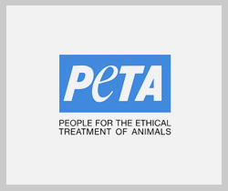 Our celebrity supporters of peta