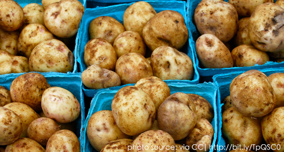 Grow Potatoes From Sprouts