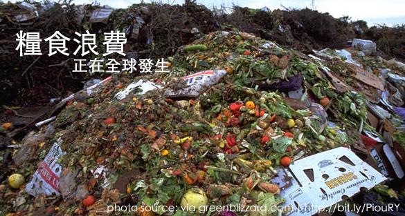 糧食浪費數據:全球