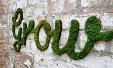 Guerrilla Gardening – Moss Graffiti