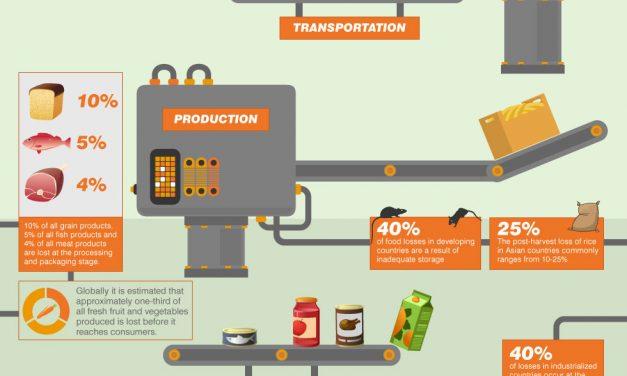 浪費食物:從農場到餐桌到垃圾堆填區