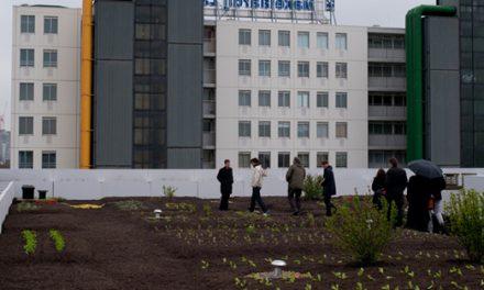 Urban Rooftop Farms: Dakakker