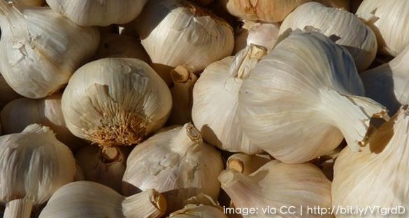 Grow Garlic in 5 Easy Steps