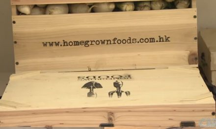 Organic Farming in Hong Kong