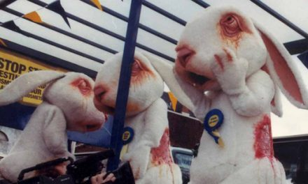 Europe ban on animal testing for cosmetics
