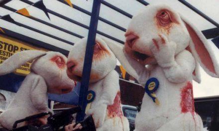 Europe ban on animal testing for cosmetics