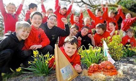 英國將園藝課加入國家課程框架