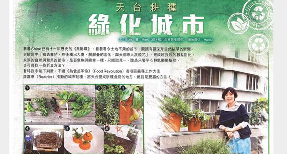 天台耕種 綠化城市