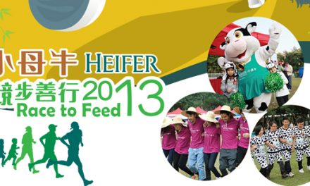 Heifer Race to Feed 2013