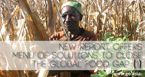 Think.Eat.Save. – New Report Offers Menu of Solutions to Close The Global Food Gap (1)
