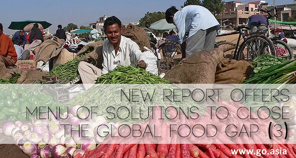 Think.Eat.Save. – New Report Offers Menu of Solutions to Close The Global Food Gap (3)