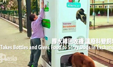 膠水樽回收機 讓廢料變飼料