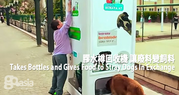 Takes Bottles and Gives Food to Stray Dogs In Exchange