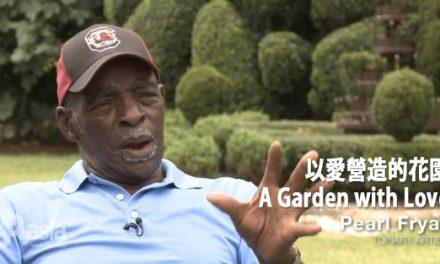 非一般的花園