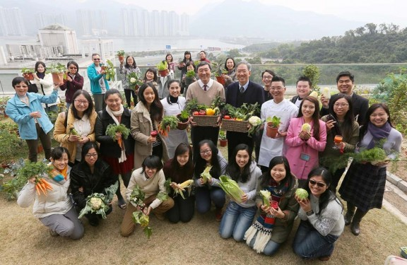 Architecture Students from CUHK Enjoy Rooftop Cultivation