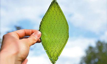 Artificial Leaf Provides Oxygen for Astronauts