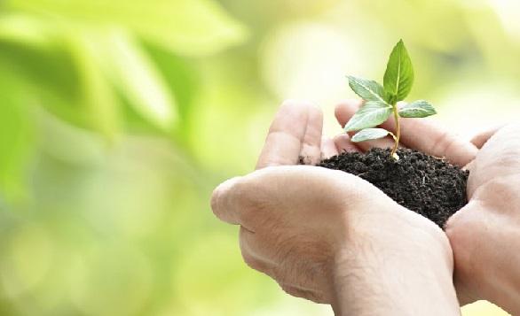 世界環境日2015 – 十個讓你輕鬆減碳足迹的方法