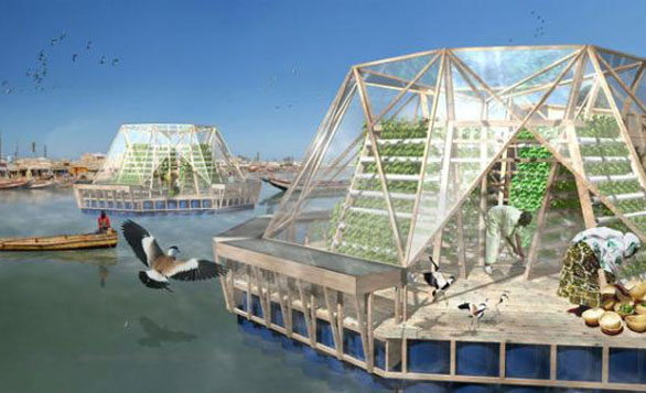 Floating, Water-Filtering Greenhouse
