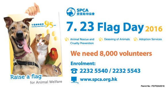 Hong Kong – Volunteers Needed ! SPCA Flag Day 2016 I Jul 23