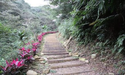 The beautifully built hiking trail