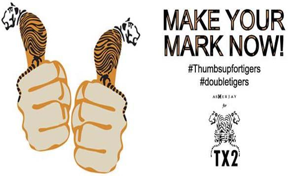 DotAsia 小虎亞吉 於台北網絡管治論壇為虎發聲「全球老虎日」響應#ThumbsUpForTigers行動