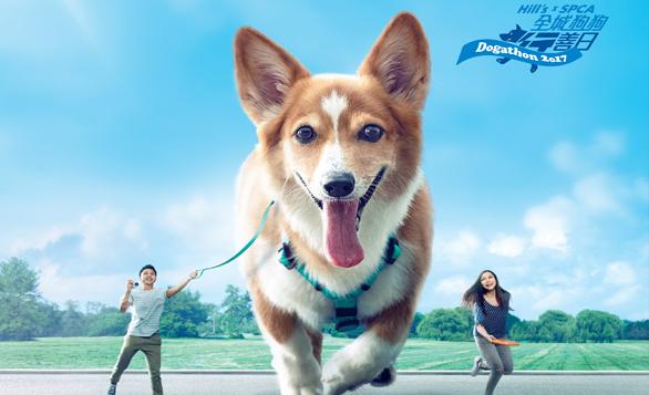 HK – SPCA Dogathon 2017 Walk I Feb 19
