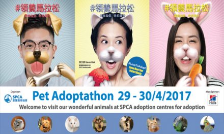 HK – Pet Adoptathon 2017 I Apr 29-30