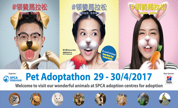 HK – Pet Adoptathon 2017 I Apr 29-30