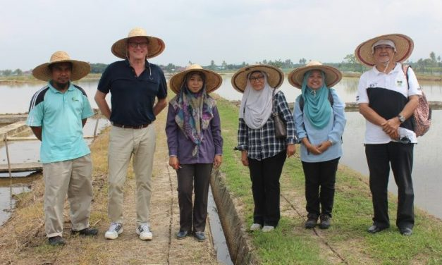 Green Malaysia – Invention of organic-based biopesticide