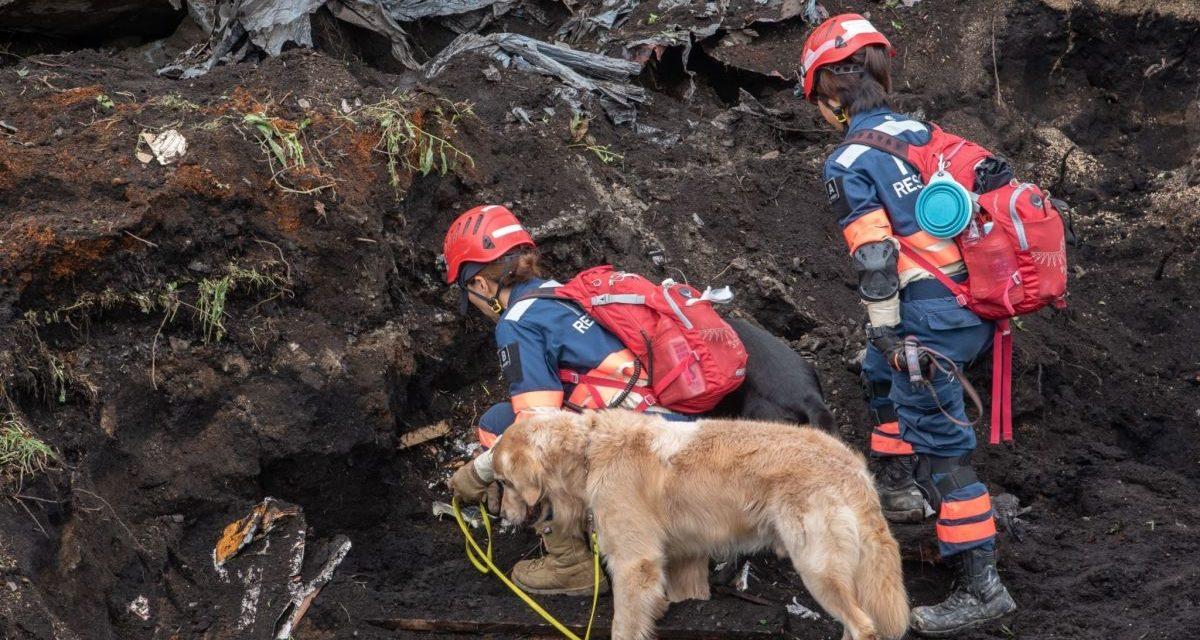 北海道地震緊急救援